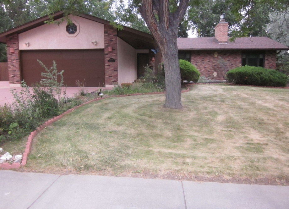 Colorado, 4 Bedrooms Bedrooms, ,3 BathroomsBathrooms,Single Family,Sold,1018